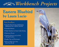 Workbench Book Eastern Bluebird