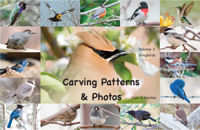 Carving Patterns and Photos by Cam Merkle – Volume 2 Songbirds