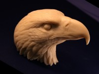 Randy Martin Bald Eagle Head 90%