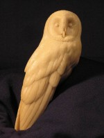 Jerry Simchuk Damaged Barn Owl