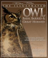 The Illustrated Owls by Denny Rogers