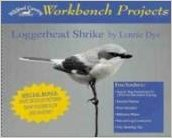 Workbench Projects Loggerhead Shrike